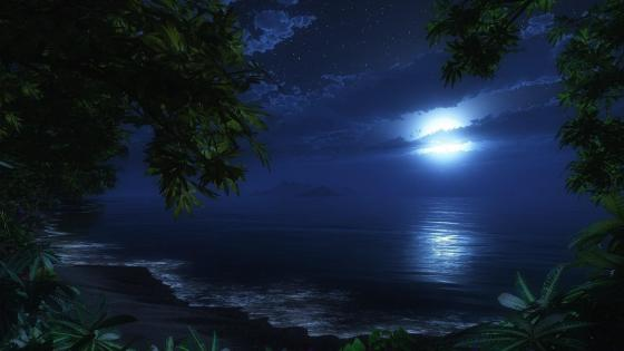 Tropical beach at night wallpaper
