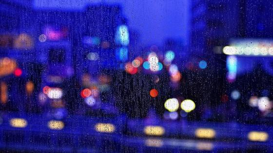 City lights on a rainy day wallpaper