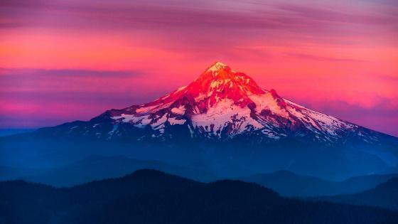 Larch Mountain wallpaper