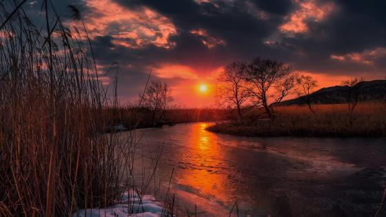 Amazing winter sunset wallpaper