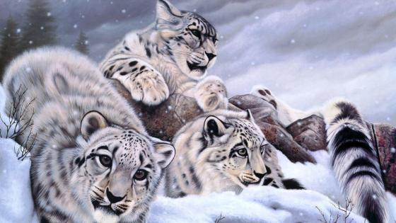 Snow leopard cubs - Painting art wallpaper
