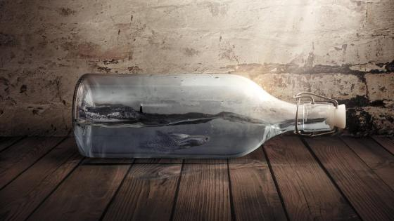 Fish in the bottle - Fantasy art wallpaper