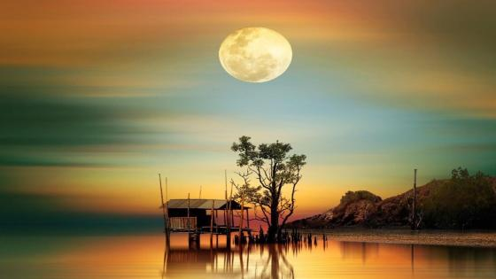 Bungalow in the moonlight wallpaper