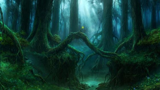 Magical night forest wallpaper