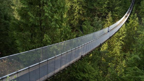 Capilano Suspension Bridge - Capilano Suspension Bridge Park, Canada wallpaper