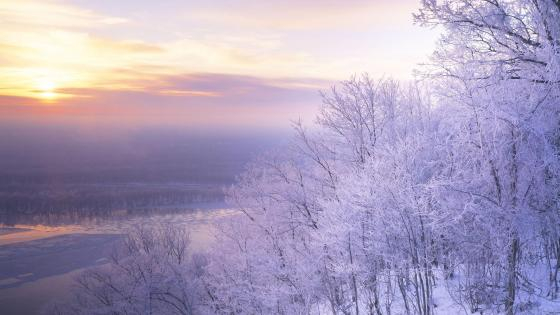Frozen winter landscape wallpaper