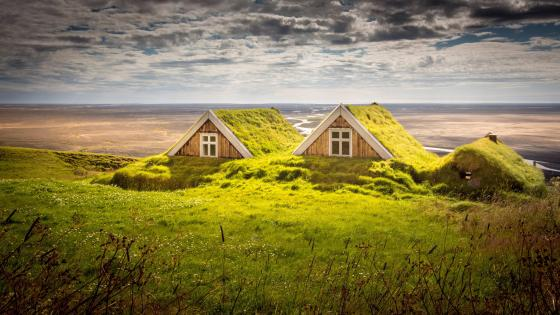 Houses covered by moss in Iceland wallpaper