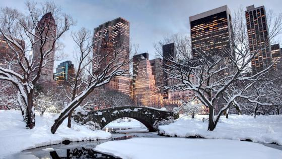 Snowy New York wallpaper