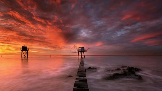 Long pier inthe sunset wallpaper