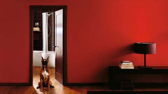 Cool Style Red Room with a dog wallpaper