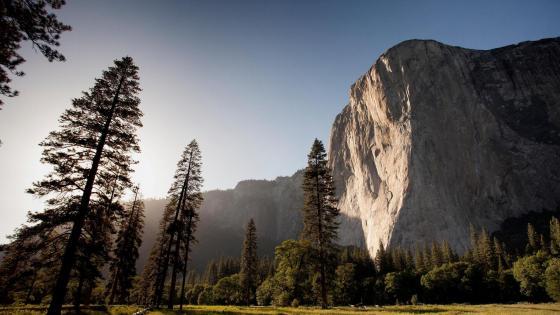 El Capitan - Yosemite National Park, California, United States wallpaper
