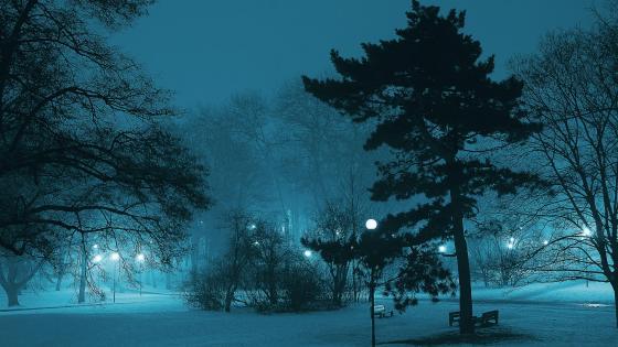 Bluish winter wallpaper