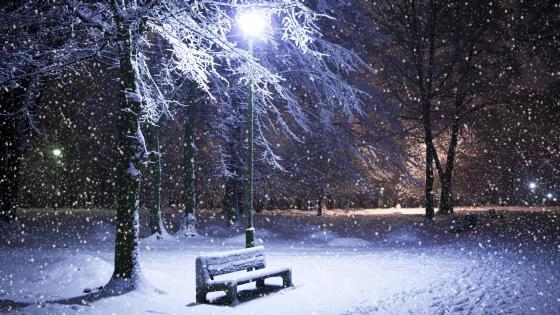 Bench in the snowfall wallpaper