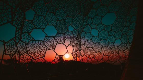 Sunset through a grid wallpaper