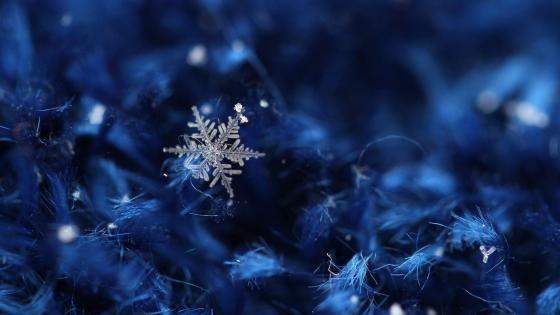 Christmas ice crystal wallpaper