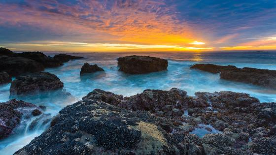 Rocky coast in the sunset wallpaper