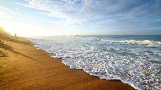 Beach with patterned sand wallpaper