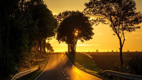 Road in the sunset wallpaper