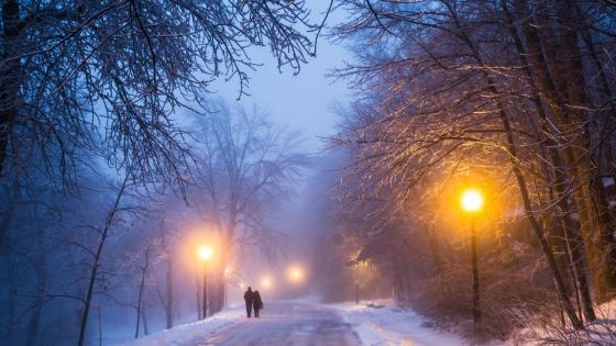 Walking couple in the winter street wallpaper