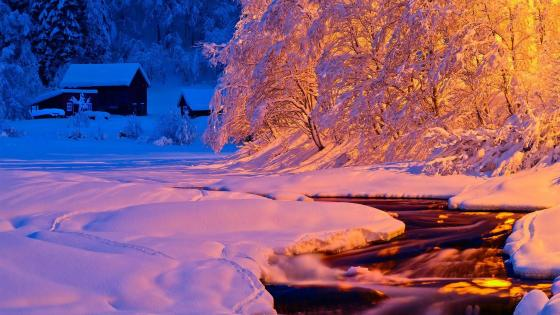 Winter light wallpaper