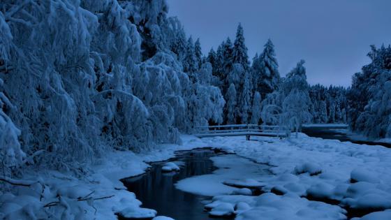 Blue winter landscape wallpaper