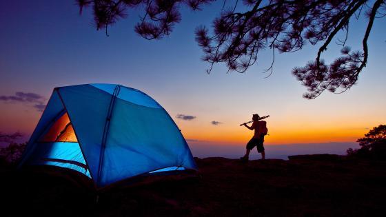Illuminating tent wallpaper