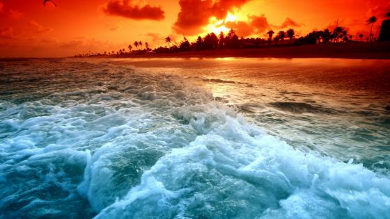 Foamy waves in the sunset wallpaper
