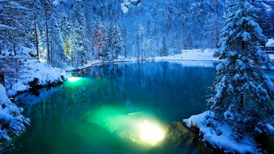 Romntic forest lake in winter - Blausee, Switzerland wallpaper