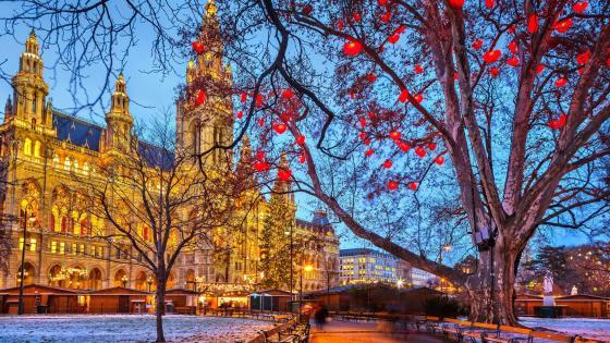 Vienna Christmas Market wallpaper