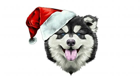Alaskan Malamute Santa Claus illustration wallpaper