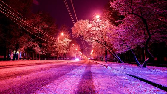 Winter street in Moscow wallpaper