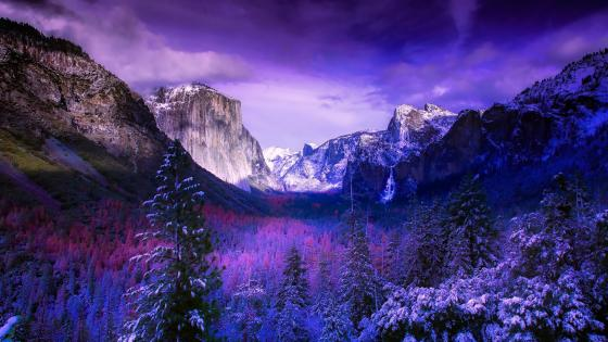 Winter Tunnel View wallpaper