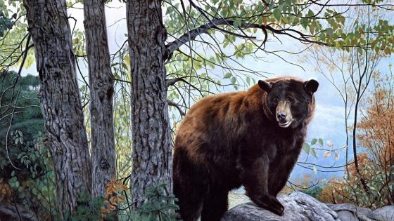 Bear in the forest - Painting art wallpaper