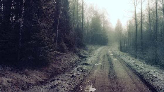 Dirt road wallpaper