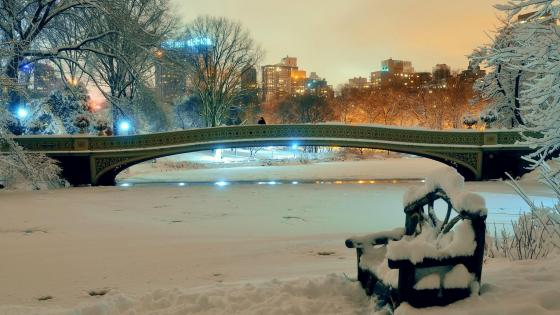 Central Park in winter wallpaper