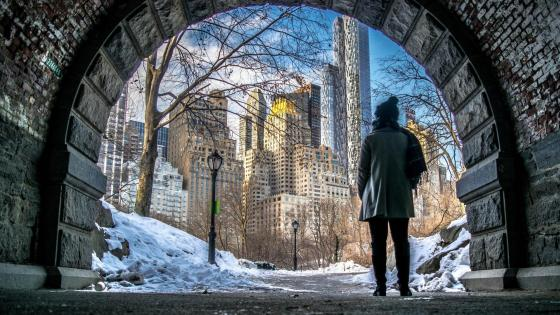 New York from the Central Park in winter wallpaper