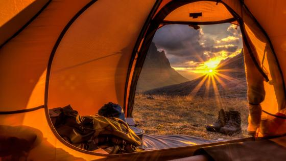 Tent sunlight wallpaper