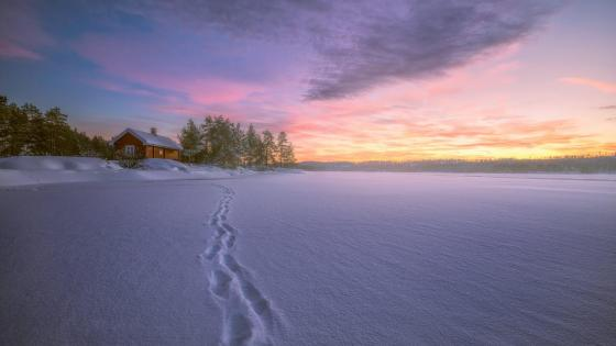 Snowy frozen lake in the sunset wallpaper