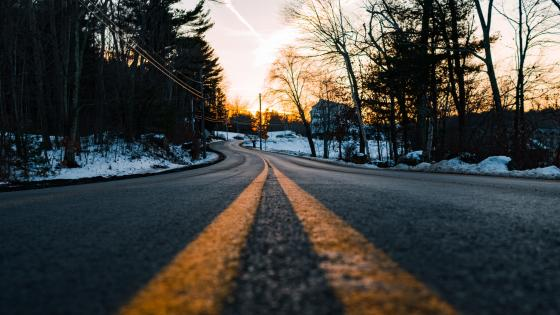 Road with snowy trees wallpaper