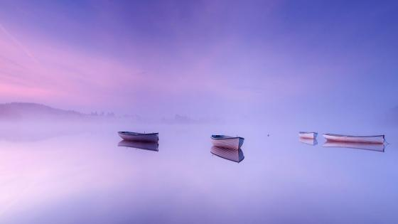 Misty lake reflection wallpaper