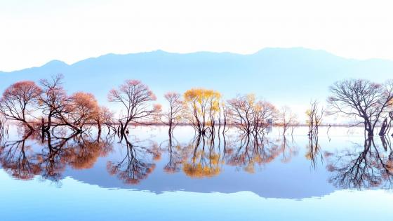 Huanglong Pond reflection wallpaper