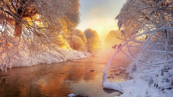 Murinskiy Stream (St. Petersburg, Russia) wallpaper