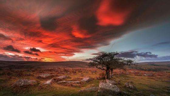 Dartmoor National Park - United Kingdom wallpaper
