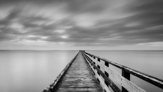 Long pier - Monochrome photography wallpaper