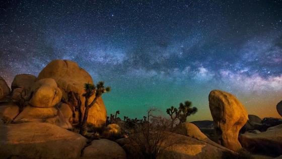 Milky Way above Joshua Tree National Park wallpaper