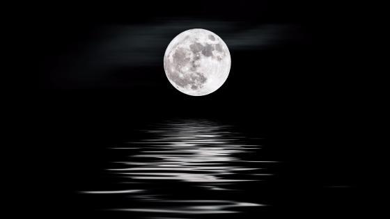 Qinghai Lake moonlight wallpaper