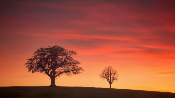 Derbyshire sunset wallpaper