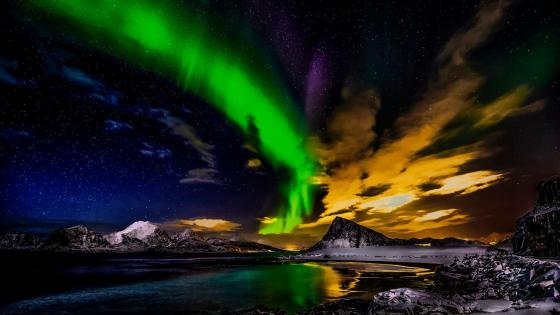 Northern Lights in Norway wallpaper