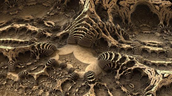 Bizarre landforms - Fractal bones wallpaper