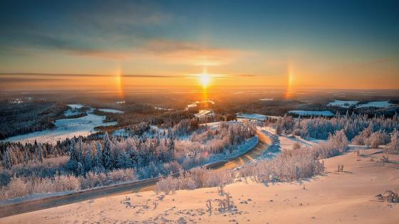 Belogorye Nature Reserve in winter wallpaper